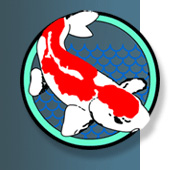 Miracle Koi Food is the only Koi Food guaranteed to make Koi grow, enhance color, or money back.